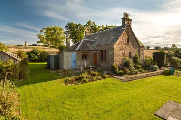 Farmhouse Garden