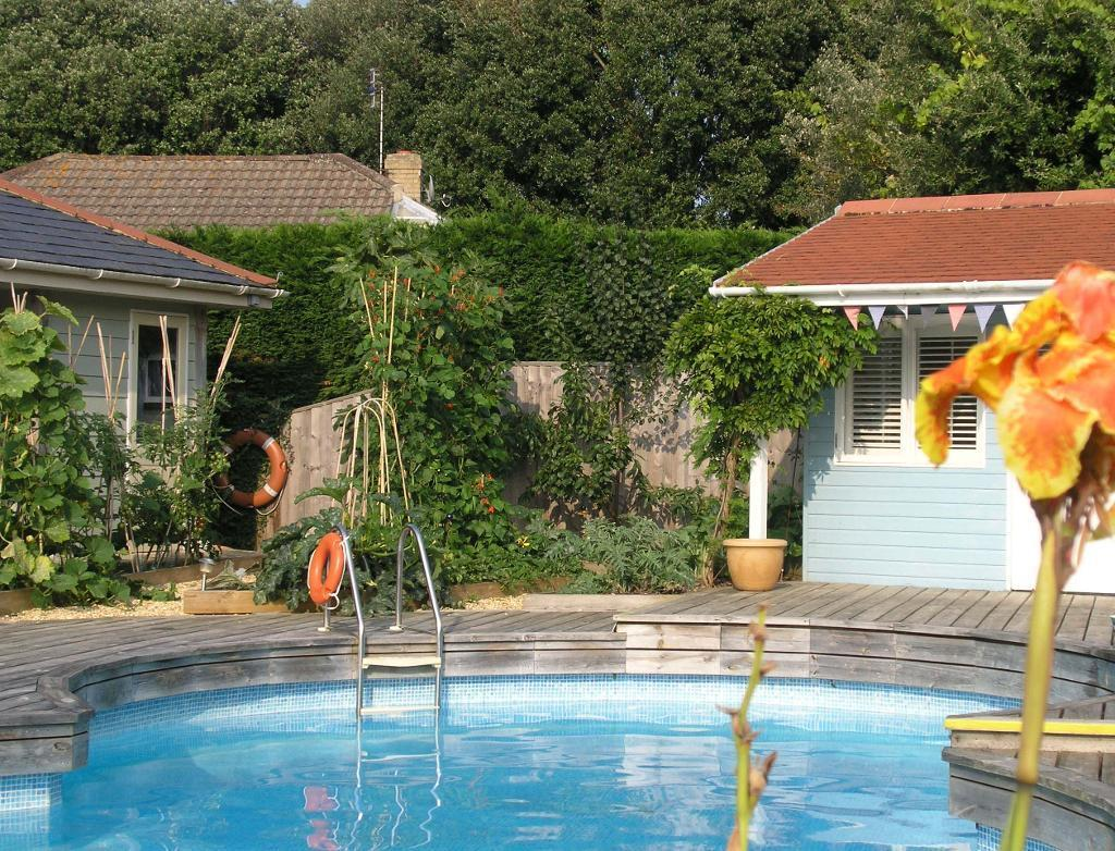 Pool and vegetable garden