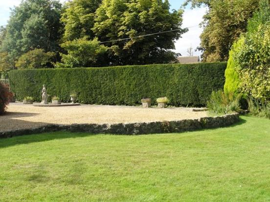 Garden and Driveway