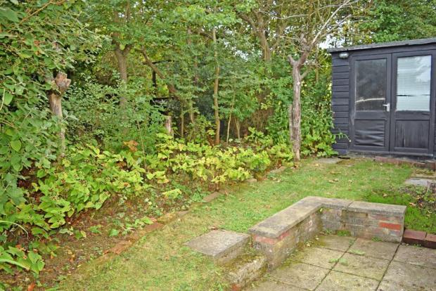 Side garden &  shed