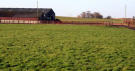 Torbant Farm Plot for sale