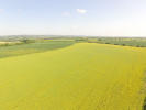 Farm Land in 58.85 Acres, Skirpenbeck