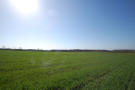 Land in 17.37 Acres, Scrayingham