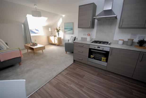 Kitchen/ Living Spac