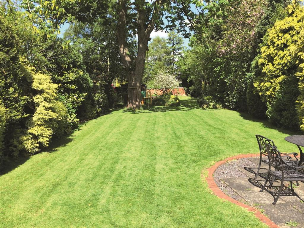 Elmdon Garden Summer
