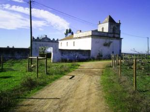 Alto Alentejo Farm Land for sale