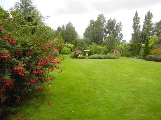 Garden SG3.JPG