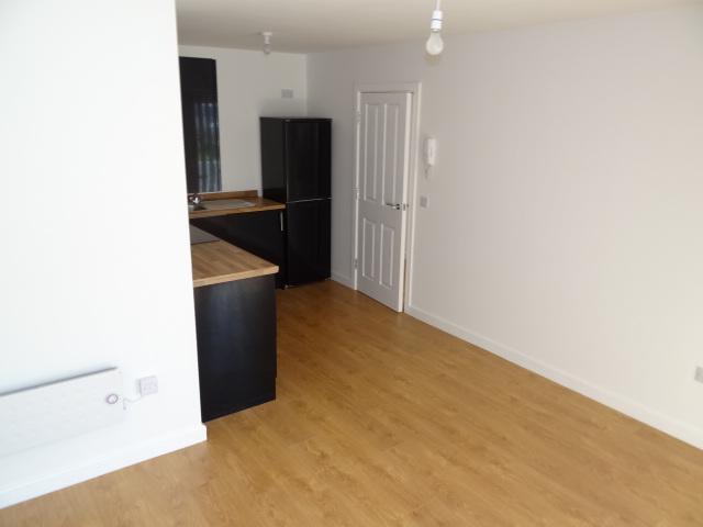 1 Bedroom Apartment To Rent In Lower Loveday Street Birmingham B19