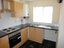 Saddlers Place semi detached property to rent