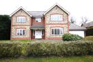 Detached property to rent in Woodgate Avenue, Northaw...