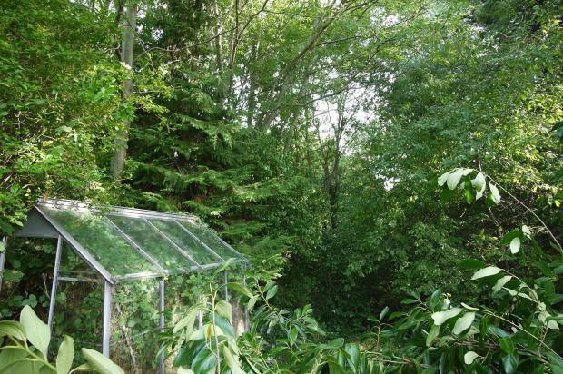 Greenhouse: