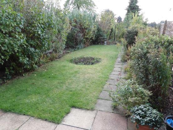 Garden (1)