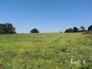 Warwick Road Land