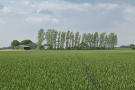 Land for sale in Mere Farm...