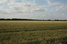 Farm Land for sale in Willingham...