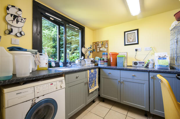 Cattery Kitchen