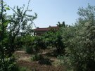 Character Property for sale in Basilicata, Matera...