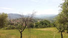 Country House for sale in Roccadaspide, Salerno...