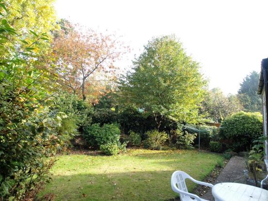 aa garden2.jpg