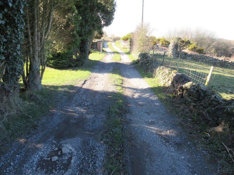 Lane/Driveway