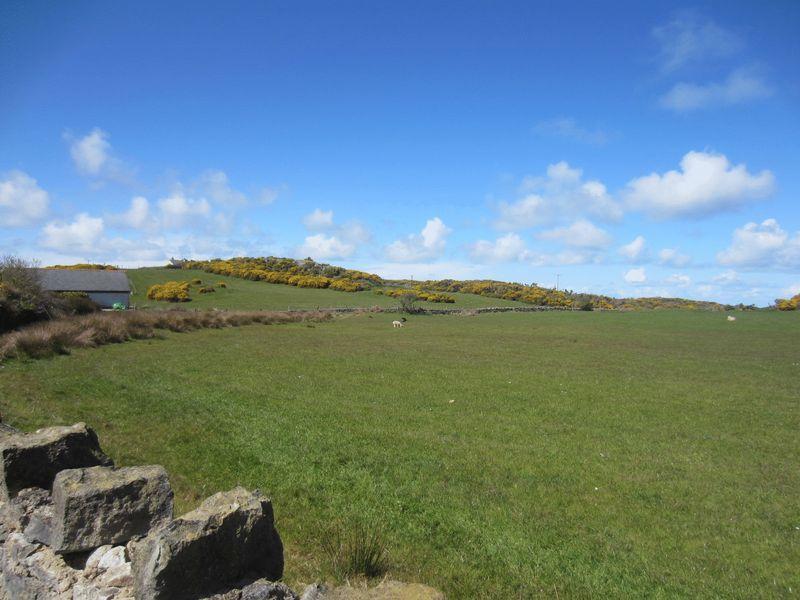 Rear Rural View