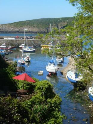 Cemaes Harbour