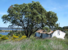 1 bedroom home for sale in Alto Alentejo...