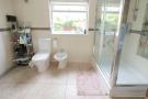 Shower Room (Ground)