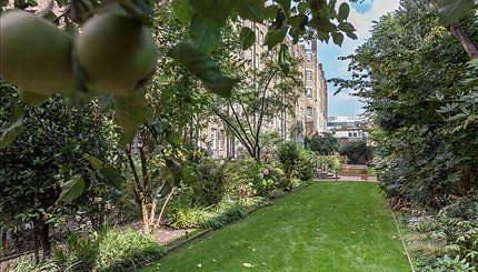 Comunal garden