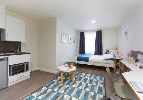 Living Area / Bedroo