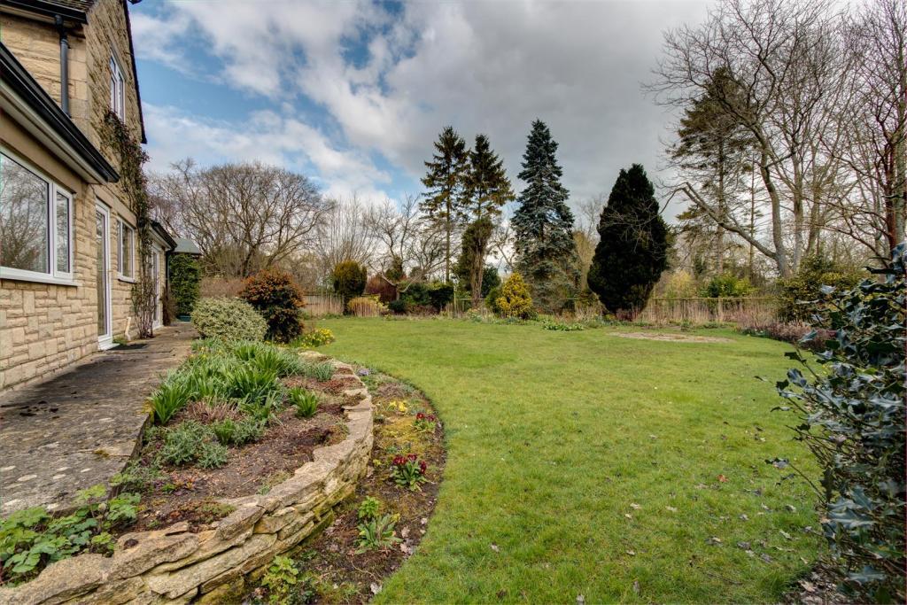 GardenV1.jpg