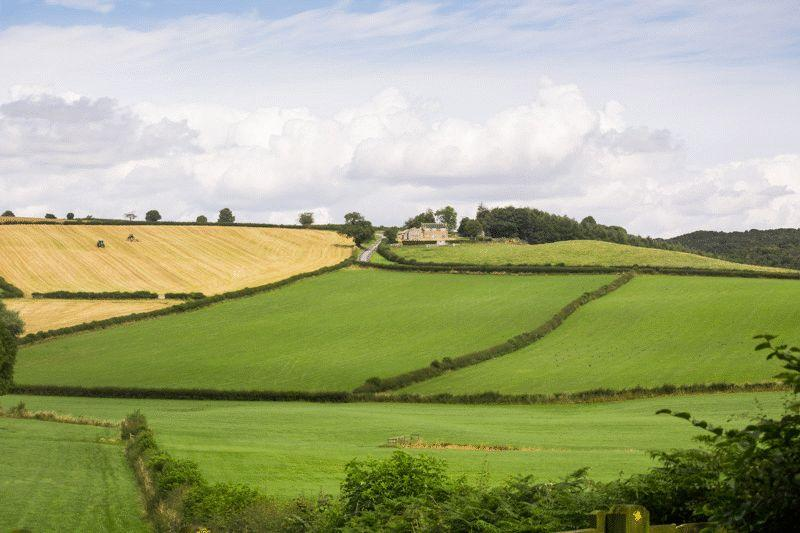 Kirkhills