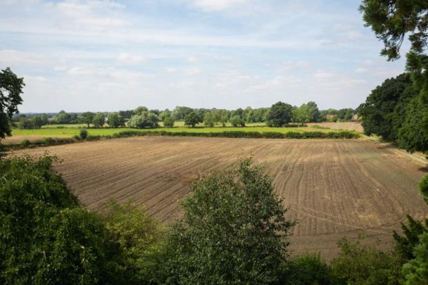 field/land