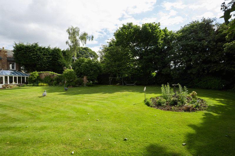 garden & c...