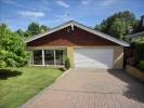 Bungalow to rent in Woodland Close, Longfield