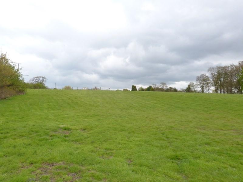 Bottom Field
