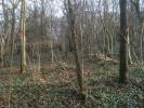 Titchfield Lane Land for sale