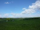 Monziehall Steadings Land for sale