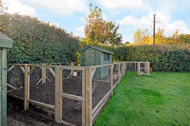 Garden/Chicken pen
