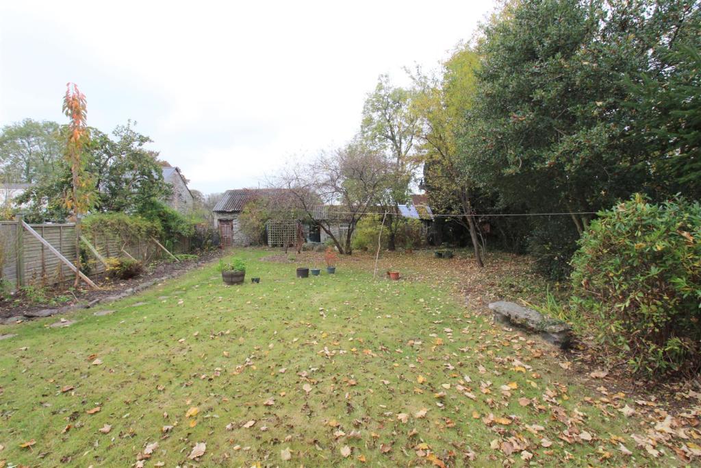 rear garden 1.JPG