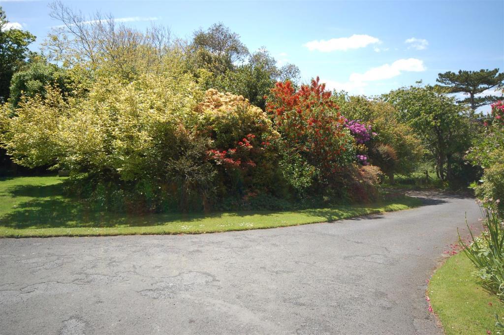 Penynant - driveway.