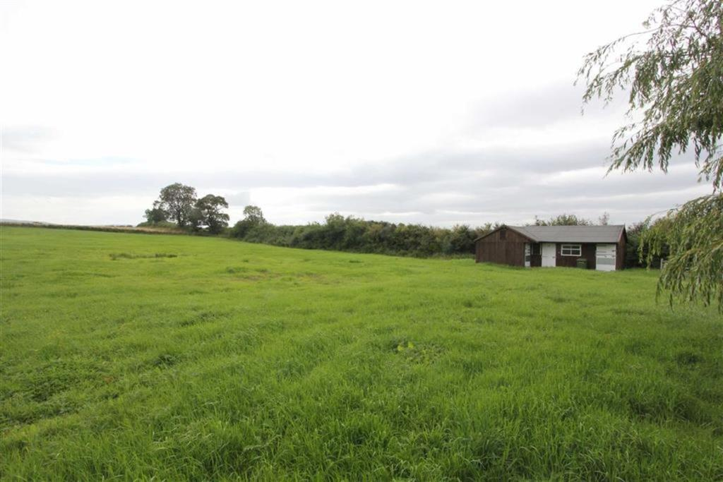 Paddock and Stables