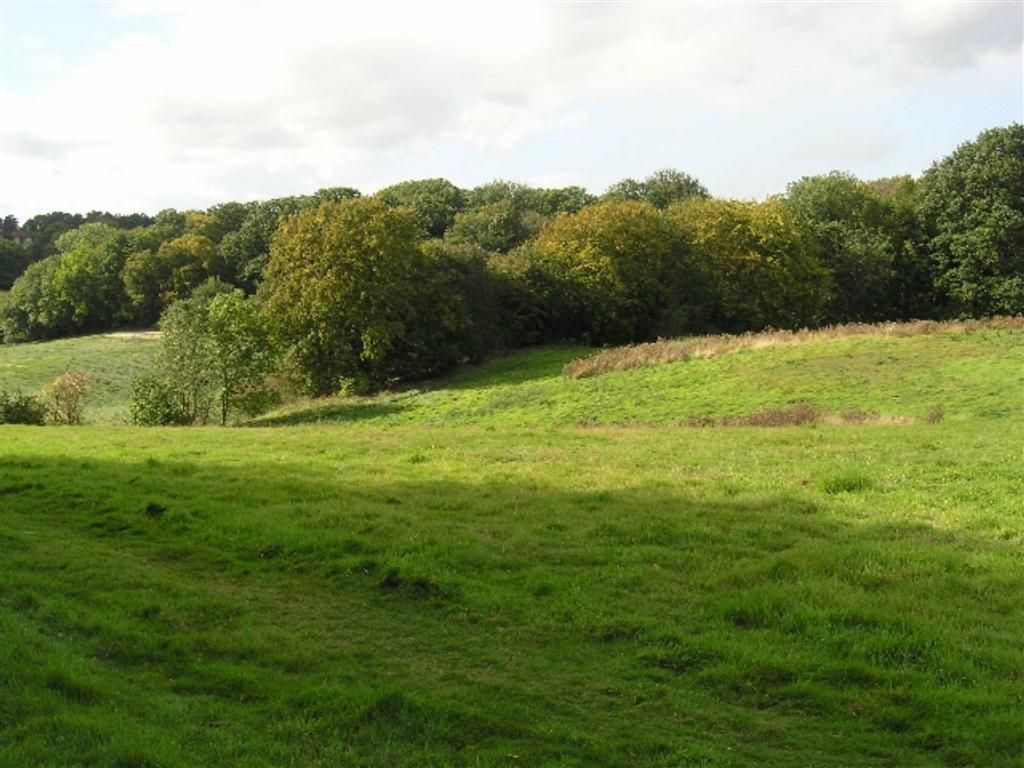 Property For Sale Tewin Hertfordshire