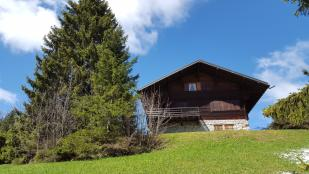 Chalet for sale in Vaud, Gryon
