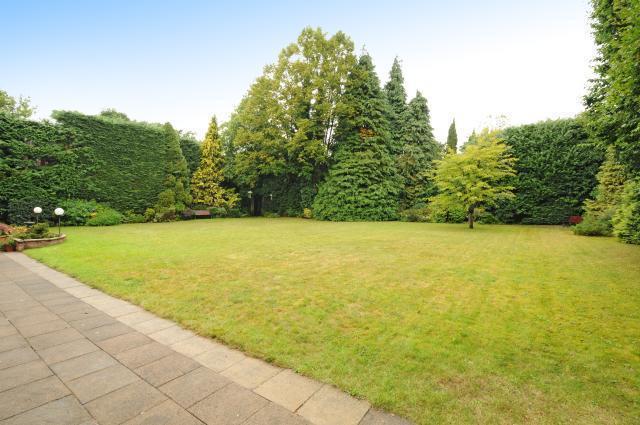 Current Rear Garden