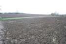 Lot 1 - 41.58 Acres of Arable Land at Wymington Farm Land