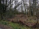 Land for sale in School House Woodland...