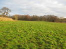 Land in Swettenham, Congleton for sale