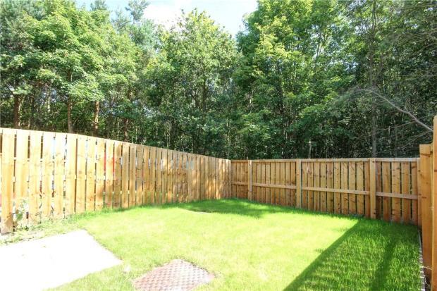 Garden Plot 10