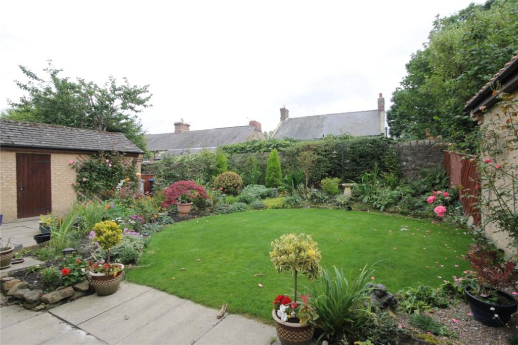 Garden Pic 1